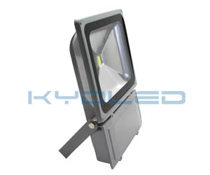 other supplier 100W led floodlight