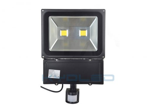 Outside Security Lights 100W