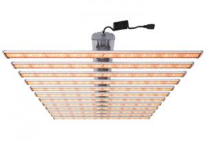 800W LED Grow Light