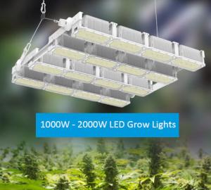 Sunshine-Jumbo Series LED Grow Light Manufacturer 01